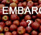 Ankieta: Czy poniosłeś straty przez rosyjskie embargo?