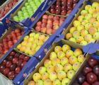 WAPA opublikowała najnowsze dane. Zbiory jabłek i gruszek w państwach Południowej Półkuli