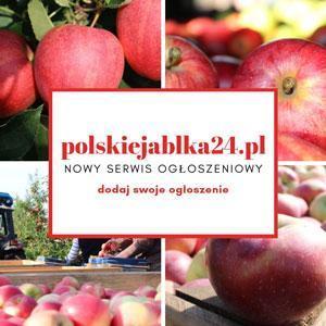 polskiejablka24.pl